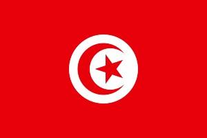 Jaka waluta w Tunezji? – flaga Tunezji